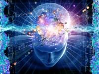 Brain-information--300x225
